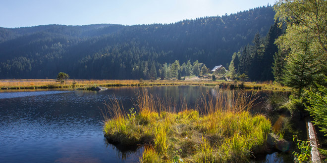 includes/images/header/main/Nationalpark-Bayerischer-Wald--Kleiner-Arbersee.jpg