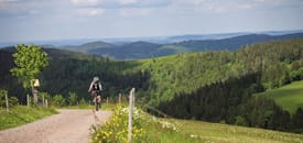 Radurlaub im Schwarzwald