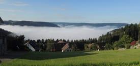 Panoramawandern im Schwarzwald